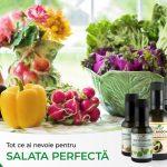 "Campania ""Salata perfecta"""